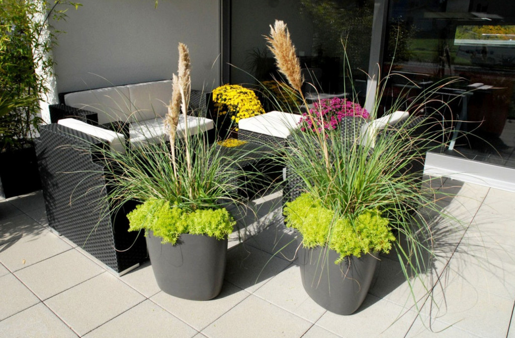 big flower pot ideas