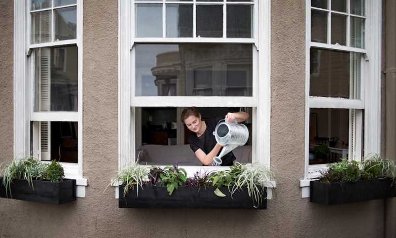 black window boxes planters