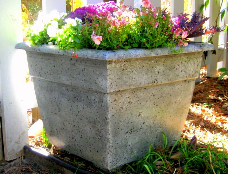concrete flower boxes