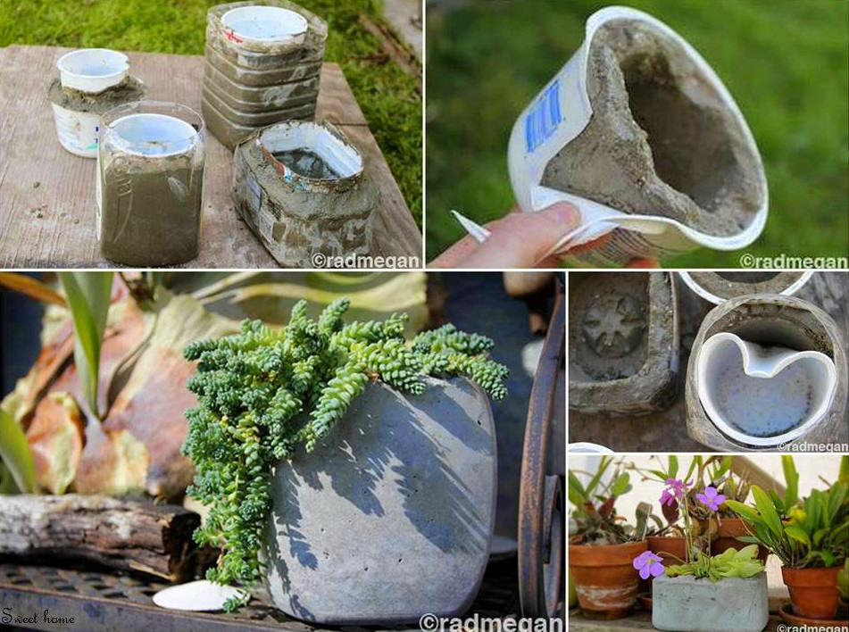 Flowers Concrete Pots Ideas Interior Design Ideas