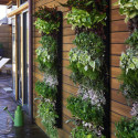 garden wall planter designs