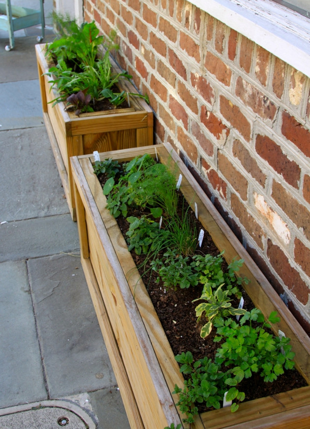 herb garden planter diy