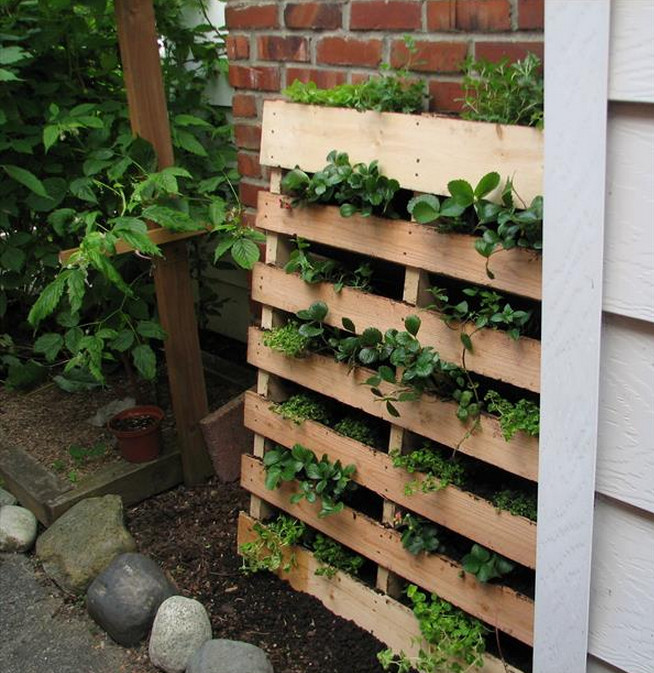 herb gardens ideas