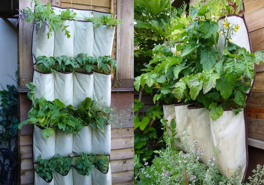 herb planters outdoor