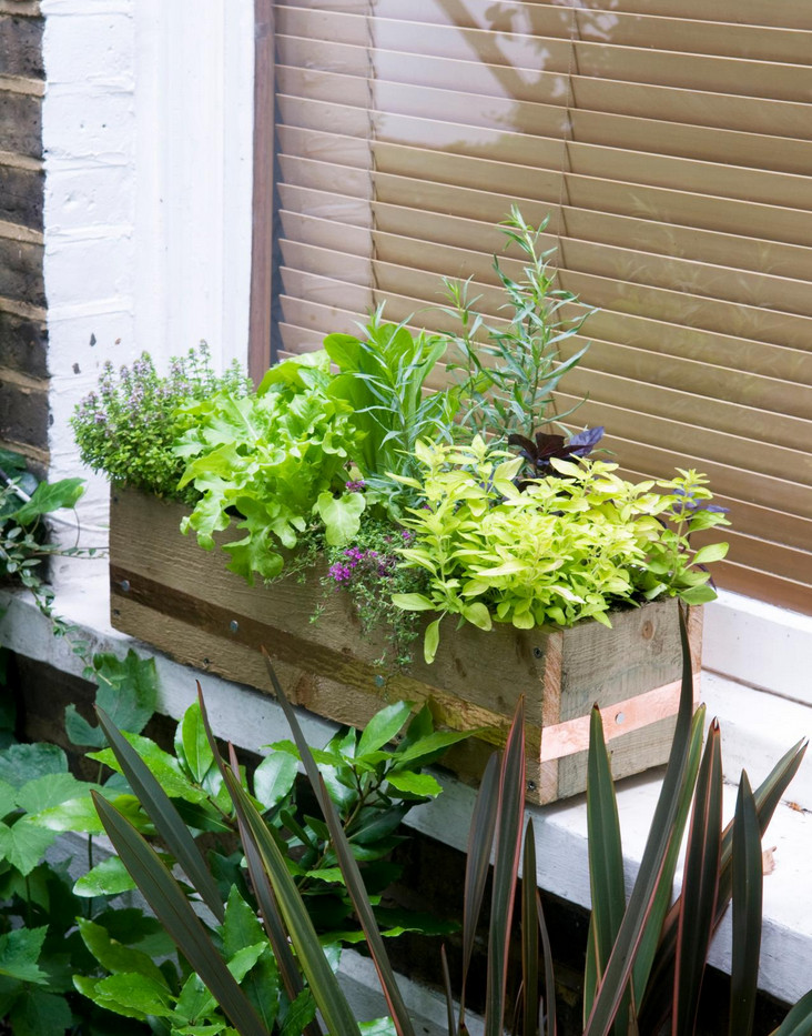 Indoor Window Box Planter | Interior Design Ideas