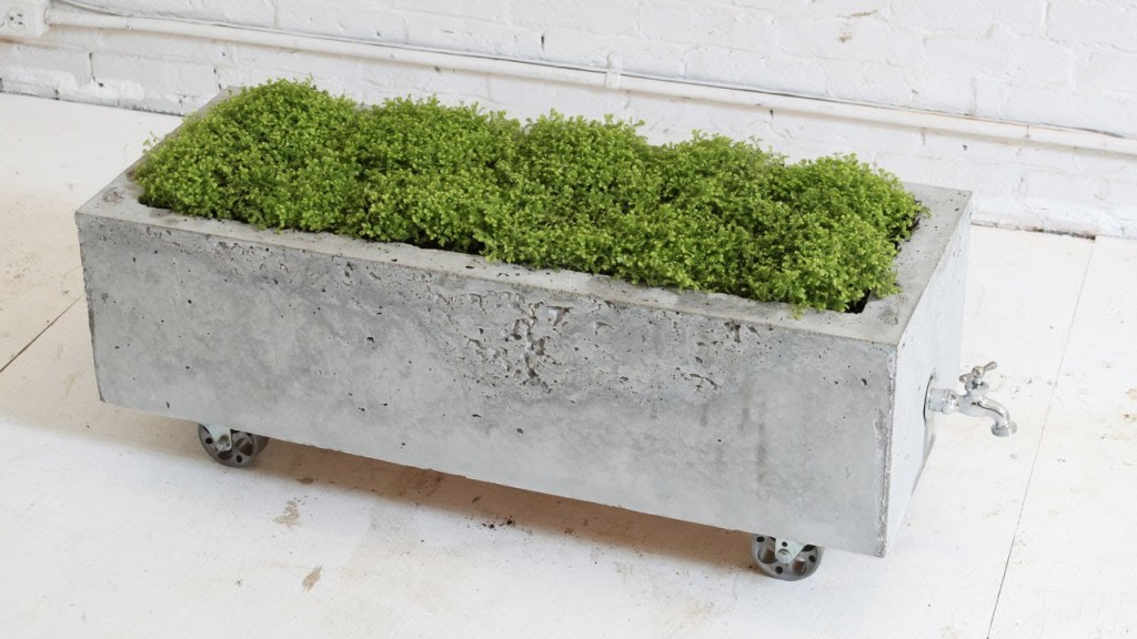 Concrete flower pots are found in different styles
