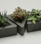 Set of 3 Triangular Concrete Succulent Plant