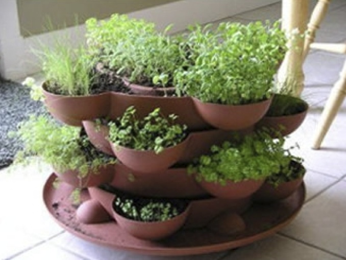 Small herb garden planter
