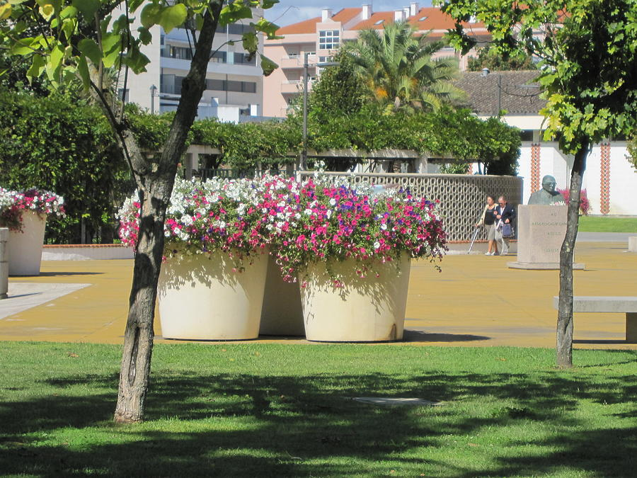 big flower pot designs
