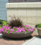 big flower pots outdoor