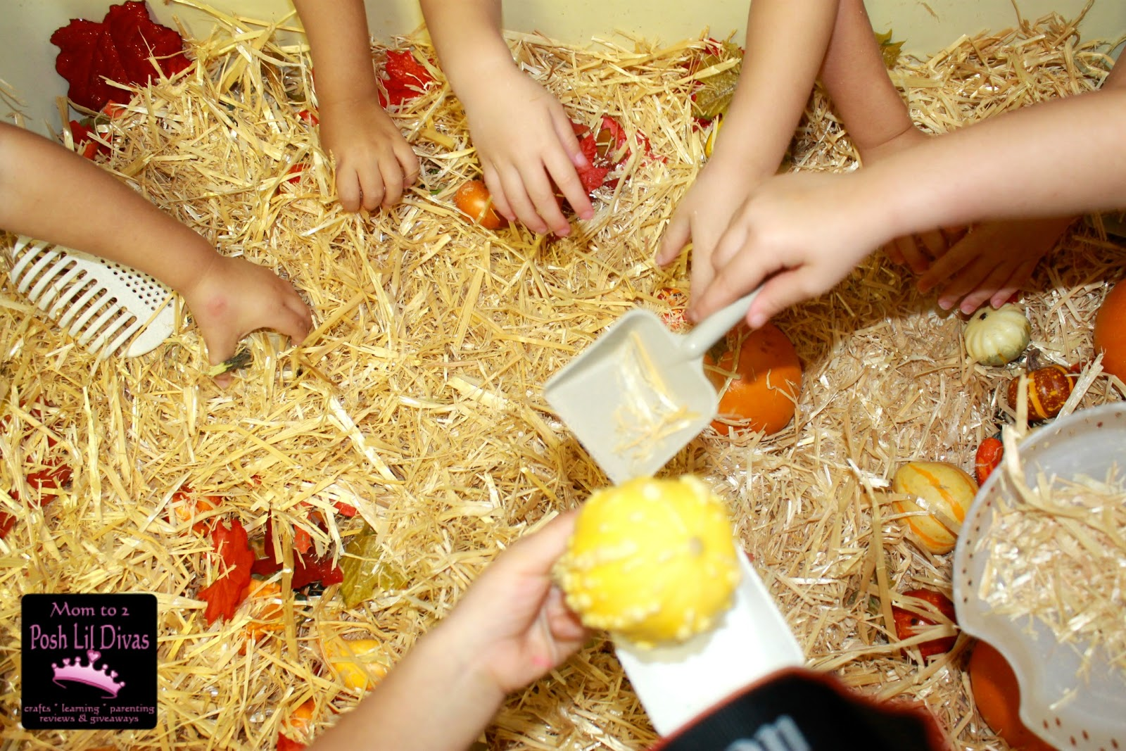 fall sensory table ideas preschool