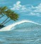 surfing wallpaper murals